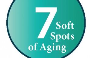 logo_seven_soft_spots
